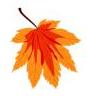 leaf2005
